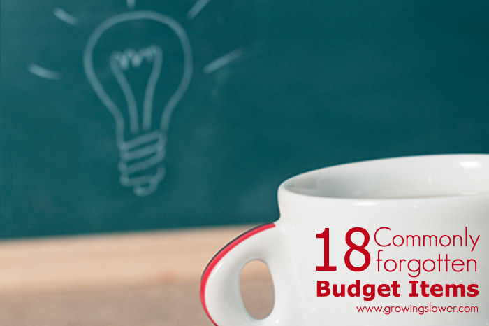 18 Commonly Forgotten Budget Items