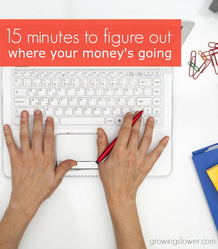 How to Make a Budget - How to Analyze Your Spending - Find out where all your money's going in just 15 minutes!