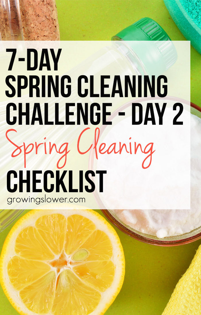 It's Day #2 of our 7-Day Spring Cleaning Challenge, and we're going to scrub up some of the dark corners that might have been forgotten over the long winter. Pick 3 from the simple spring cleaning checklist to do today!
