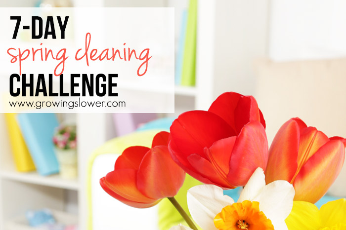 Spring Cleaning Challenge Day #1: Clear the Counters