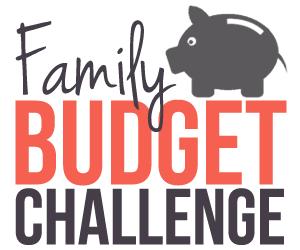 Family-Budget-Challenge-log