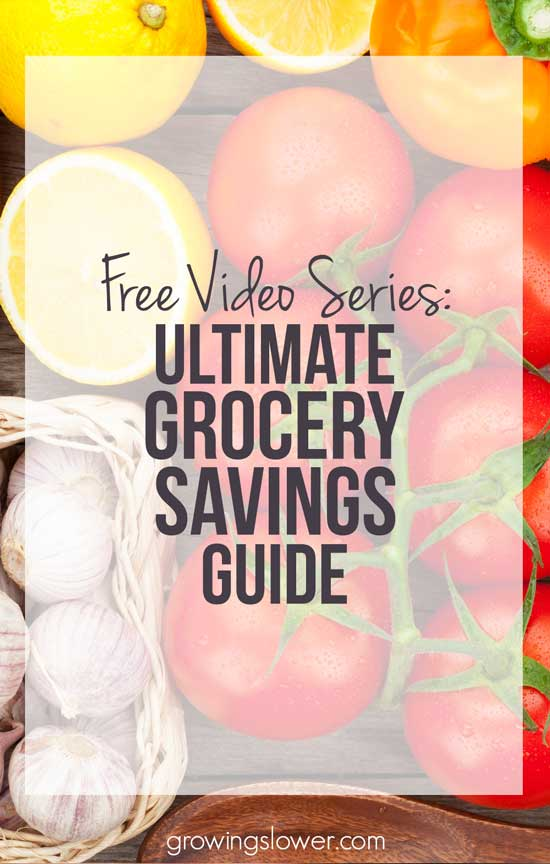 Save money on groceries without clipping coupons! Learn to save money with this free video series that will guide you through how to save time and money shopping for healthy food. You'll get three full length video lessons that will show you…How to save on organic. How to save on quality meat and dairy. How to save without buying processed foods. Where to do your grocery shopping on a budget to save on healthy foods, without coupons. Plus, the basics of the grocery savings method I used to cut my grocery budget in half!